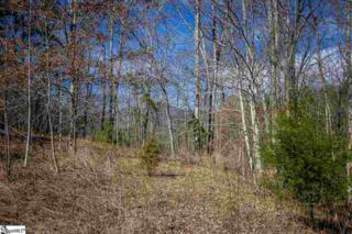 2410  Moorefield Memorial Highway  , Pickens, SC 29671 (#1296982) :: Hamilton & Co. of Keller Williams