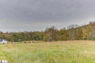 Stewart Farms- Century Drive  , Fountain Inn, SC 29644 (#1301265) :: Hamilton & Co. of Keller Williams