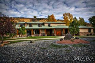 4208  Kannah Creek Road  , Whitewater, CO 81527 (MLS #672828) :: Keller Williams CO West / Diva Team