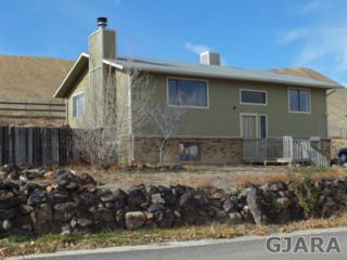 117.5  William Drive  , Grand Junction, CO 81503 (MLS #673279) :: Keller Williams CO West / Diva Team