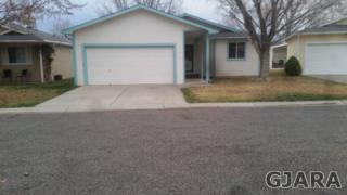 11  Rhone Court  , Grand Junction, CO 81507 (MLS #674744) :: Keller Williams CO West / Diva Team