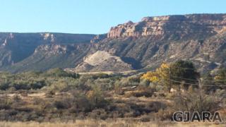 2085  E 1/2 Road  , Grand Junction, CO 81507 (MLS #672823) :: Keller Williams CO West / Diva Team