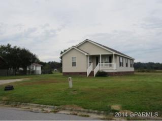 312  Academy Drive  , Greenville, NC 27858 (MLS #116288) :: The Liz Freeman Team - RE/MAX Preferred Realty