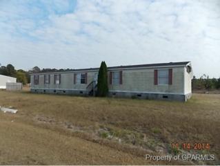 105  Nichols Drive  , Vanceboro, NC 28586 (MLS #116920) :: The Liz Freeman Team - RE/MAX Preferred Realty