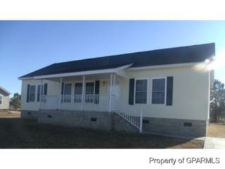 1597  Gum Swamp Church Road  , Greenville, NC 27834 (MLS #117023) :: The Liz Freeman Team - RE/MAX Preferred Realty
