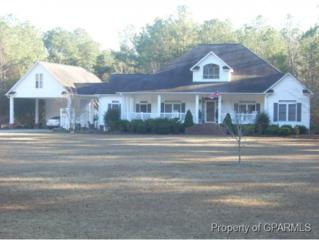 5134  Leary Mills Road  , Vanceboro, NC 28586 (MLS #117034) :: The Liz Freeman Team - RE/MAX Preferred Realty