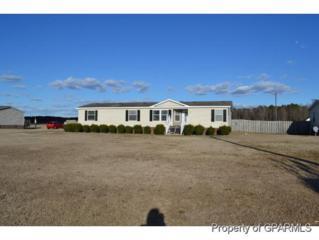 1724  Gum Swamp Church Road  , Greenville, NC 27834 (MLS #117507) :: The Liz Freeman Team - RE/MAX Preferred Realty