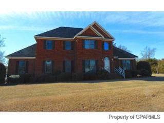 3802  Tyler Drive  , Winterville, NC 28590 (MLS #117511) :: The Liz Freeman Team - RE/MAX Preferred Realty