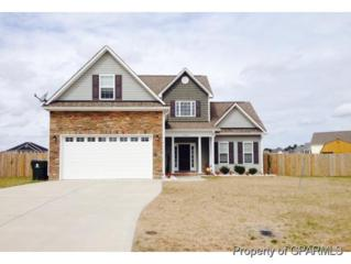 2804  Syrah Court  , Winterville, NC 28590 (MLS #118006) :: Tyre Realty Group