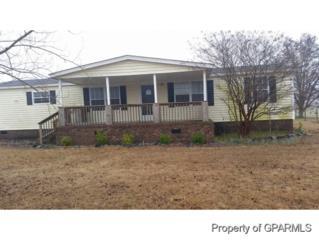 328  Tyson Loop Road  , Farmville, NC 27828 (MLS #118402) :: The Liz Freeman Team - RE/MAX Preferred Realty