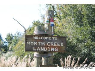 20  North Creek Drive N , Belhaven, NC 27810 (MLS #118525) :: The Liz Freeman Team - RE/MAX Preferred Realty