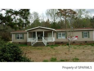 606  King Avenue  , Tarboro, NC 27886 (MLS #118814) :: The Liz Freeman Team - RE/MAX Preferred Realty