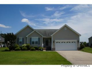 2661  Ange Street  , Winterville, NC 28590 (MLS #119237) :: Tyre Realty Group