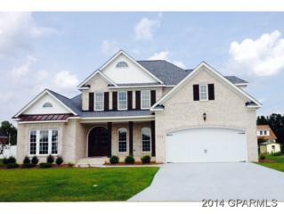 189  Blackwater Drive  , Winterville, NC 28590 (MLS #114531) :: The Liz Freeman Team - RE/MAX Preferred Realty