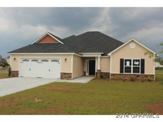 2732  Barbera Drive  , Winterville, NC 28590 (MLS #112293) :: Tyre Realty Group