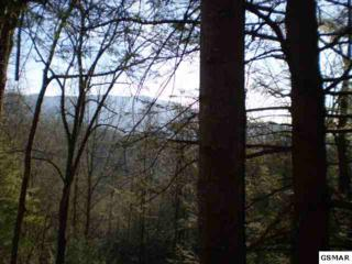 Lot 3  Off Of Catons Grove Road  , Cosby, TN 37722 (#175544) :: The Terrell Team