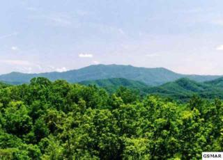 Tract 9  Knoll Top Way  , Sevierville, TN 37876 (#180905) :: The Terrell Team