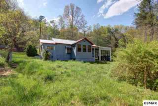 1109  Ogle Hills Road  , Gatlinburg, TN 37738 (#180916) :: The Terrell Team
