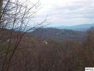 Lot 33  Luzerne Dr  , Gatlinburg, TN 37738 (#185059) :: The Terrell Team