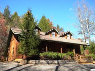 1125  Ogle Hills Rd  Adventure Lodge, Gatlinburg, TN 37738 (#185759) :: The Terrell Team