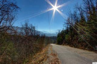 L86  Big Bear Ridge Road  , Gatlinburg, TN 37738 (#186218) :: The Terrell Team