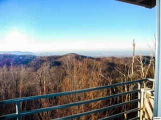 1260  Ski View Dr Unit 5107  Unit 5107, Gatlinburg, TN 37738 (#186781) :: The Terrell Team