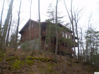 1526  Sky View Drive  , Sevierville, TN 37876 (#186797) :: The Terrell Team