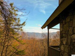 926  Daisy Ln  , Gatlinburg, TN 37738 (#187980) :: The Terrell Team