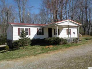 4845  Hooper Hwy  Hwy 321, Cosby, TN 37722 (#187998) :: The Terrell Team