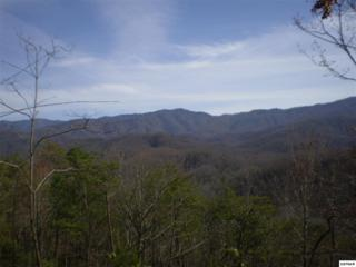 Parcel C 011.00  Geneva Lane  , Gatlinburg, TN 37738 (#188253) :: The Terrell Team