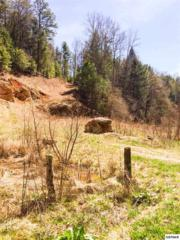 3A  Old Hag Hollow  Lot 3A, Sevierville, TN 37876 (#188328) :: The Terrell Team