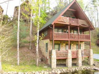 1633  Jed Trail  A Beary Nice Ca, Sevierville, TN 37862 (#188794) :: The Terrell Team