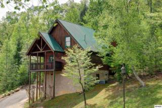 4407  Forest Vista Way  Smoky Mountain, Pigeon Forge, TN 37863 (#188976) :: The Terrell Team