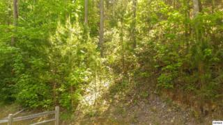 Lot 105  High Mountain Way  , Gatlinburg, TN 37738 (#189310) :: The Terrell Team