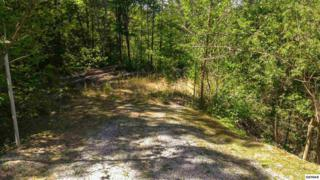 Lot 81  High Mountain Way  , Gatlinburg, TN 37738 (#189313) :: The Terrell Team