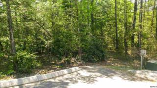 Lot 80  High Mountain Way  , Gatlinburg, TN 37738 (#189314) :: The Terrell Team
