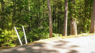 Lot 77  High Mountain Way  , Gatlinburg, TN 37738 (#189315) :: The Terrell Team