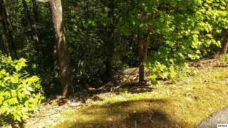 Lot 76  High Mountain Way  , Gatlinburg, TN 37738 (#189316) :: The Terrell Team
