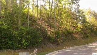 Lot 71  High Mountain Way  , Gatlinburg, TN 37738 (#189317) :: The Terrell Team