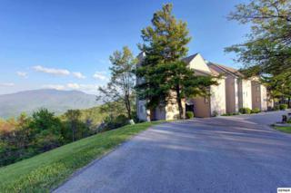 1260  Ski View Drive  #8202, Gatlinburg, TN 37738 (#189336) :: The Terrell Team