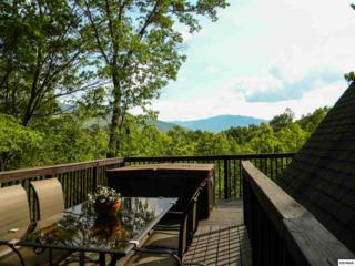 943  Scenic Trail  , Gatlinburg, TN 37738 (#189355) :: The Terrell Team