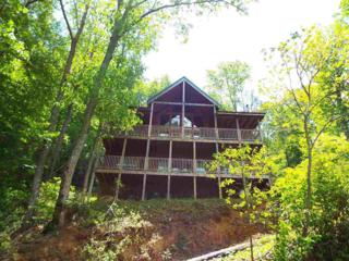 1346 N Baden Drive  Lots 34 & Po 35, Gatlinburg, TN 37738 (#189424) :: The Terrell Team