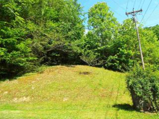Lots 43 & 46  Catons Grove Road  , Cosby, TN 37722 (#189614) :: The Terrell Team