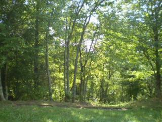 Lot 7-R  Youngblood Way  , Cosby, TN 37722 (#189742) :: The Terrell Team