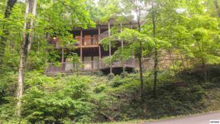 915  Daisy Ln  , Gatlinburg, TN 37738 (#189838) :: The Terrell Team