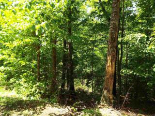 Ski View Dr W  Lot 712, Sevierville, TN 37876 (#189887) :: The Terrell Team