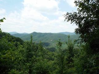 Lot 5  Hatcher Top Rd  , Sevierville, TN 37862 (#190032) :: The Terrell Team