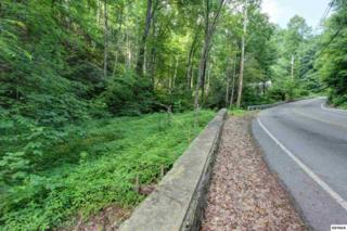 649  Ski Mountain Road  655 Ski Mountai, Gatlinburg, TN 37738 (#190294) :: The Terrell Team