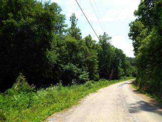 Parcel 022.17  Licking Spring Way  , Sevierville, TN 37876 (#190425) :: The Terrell Team