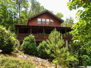 "1725  Zurich Rd  ""Parkside Escap, Gatlinburg, TN 37738 (#190474) :: The Terrell Team"